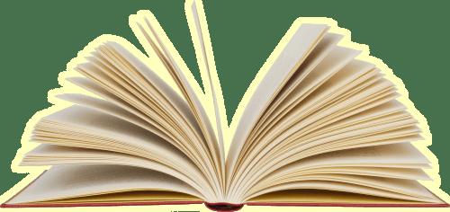 book Księga gości