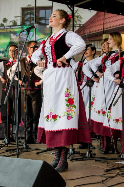 """2015 05 23 17 05 27 683x1024 500x750 Lublin – """"Koncert charytatywny Dla Jasia"""", Aula Collegium Maius UM"""